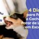 Imagem: cachorro latindo alto. Texto na imagem: 4 dicas para fazer o cachorro parar de latir em excesso.